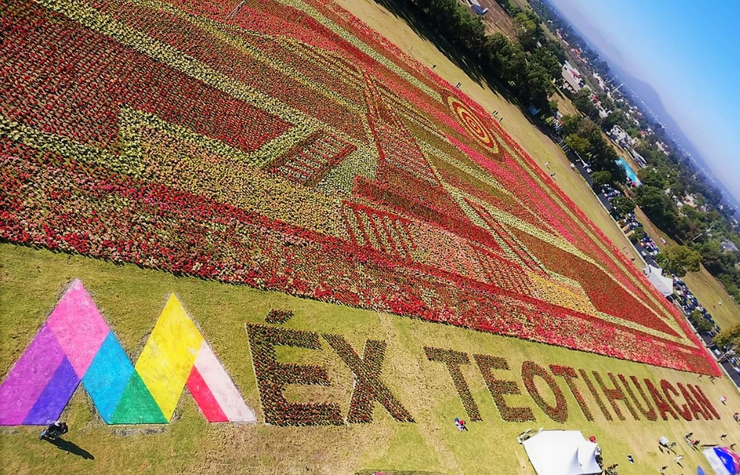Longest Flower Carpet